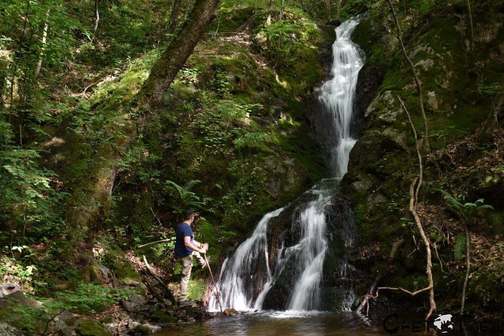 Водопад Дъбицата