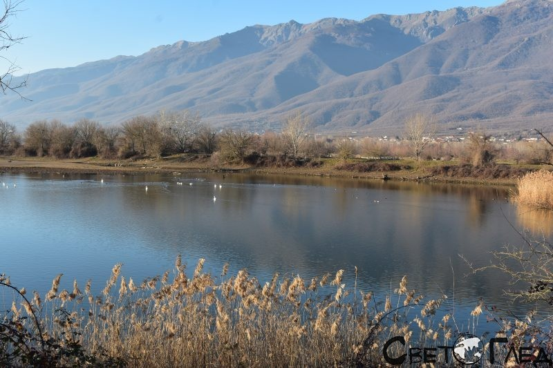 Езеро Керкини