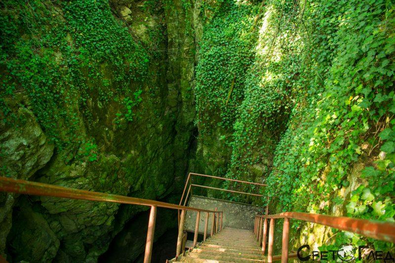 Пропастна пещера, Мусина