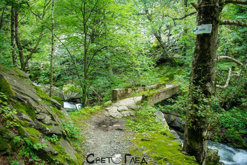 Резеват Стара река, Карлово