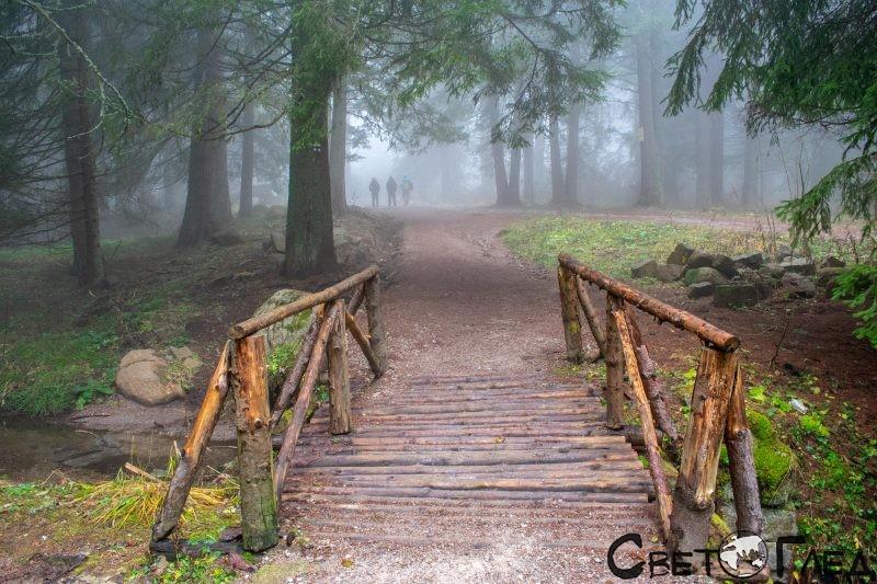 От Златните мостове до хижа Еделвайс