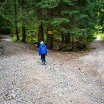 От Златните мостове до хижа Боерица