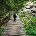 От хижа Боерица до Златните мостове