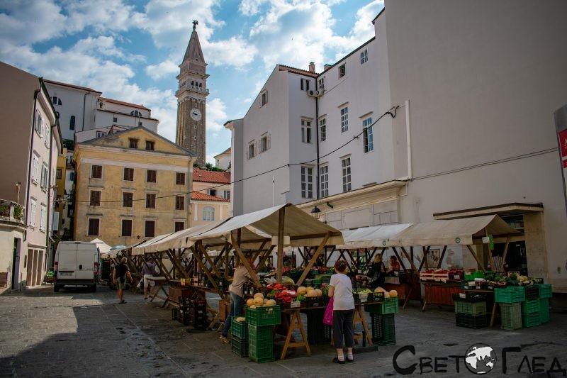 Пазарът Тартини, Пиран