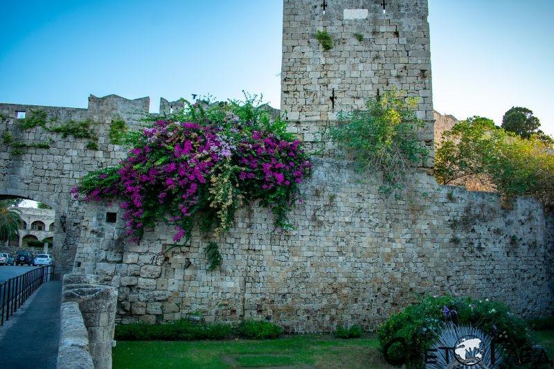 Порта на Свободата, Родос