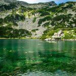 Рибното езеро