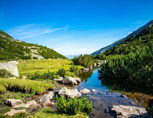 Река Демяница