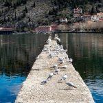 Езеро Орестиада