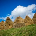 Село Бабинци, Тетевен
