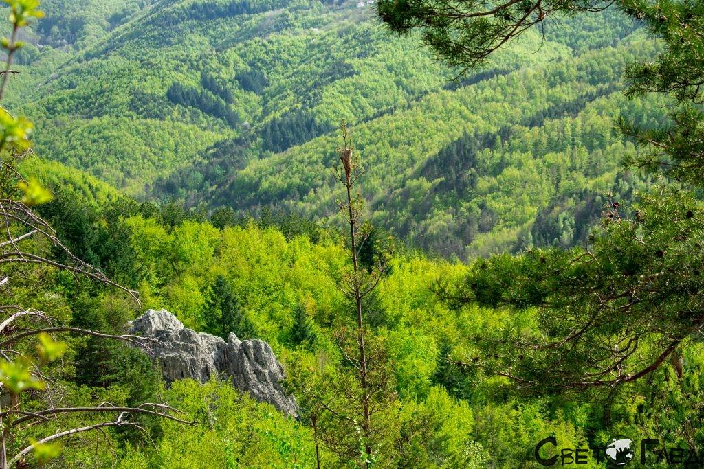 Екопътеката над Орловите скали