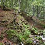 Водопад Мангъро