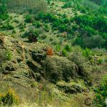 село Локорско, Момината скала
